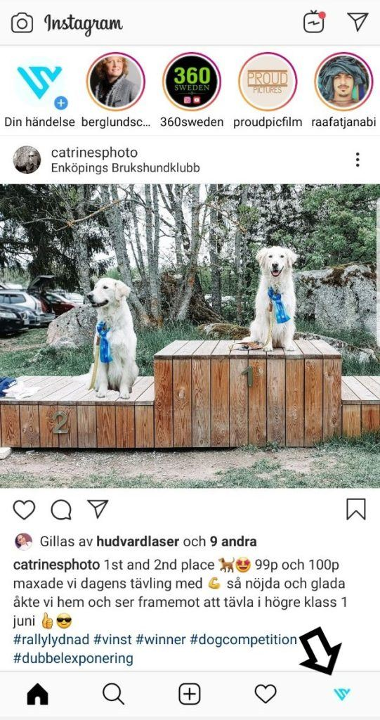 Gå in på profilen på Instagram